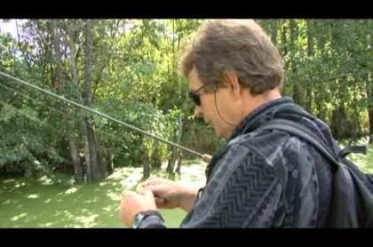 рыбалка оценка