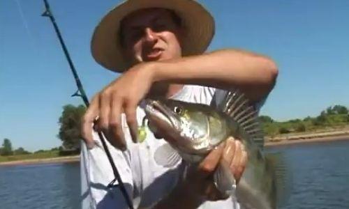 смотре про рыбалку