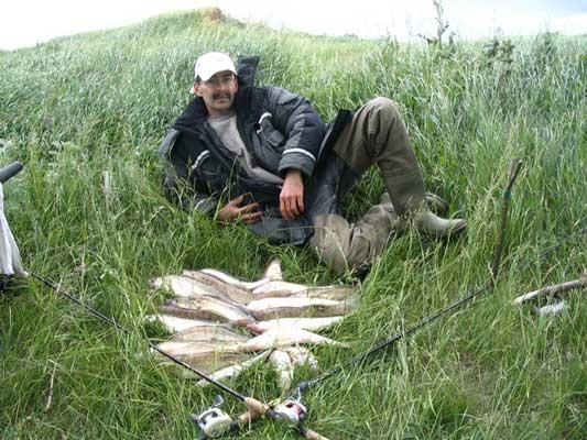 тат фиш рыболовный форум набережные челны