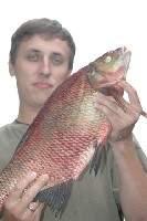 татфиш форум отчеты о рыбалке набережные челны